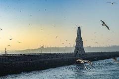 2013-Turquia-Istambul-0398.jpg