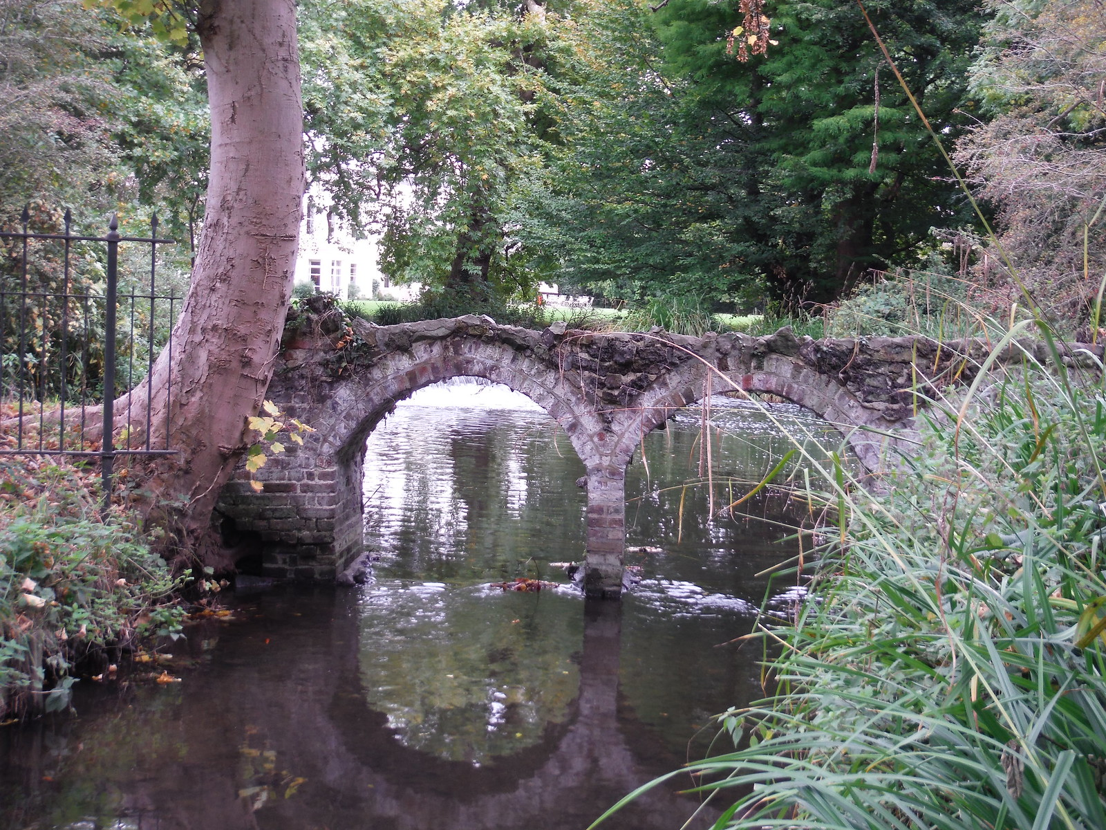Romatically Ruined Arches (Outflow of Moat of Morden Hall) SWC Walk Short 13 - Morden Hall Park and Merton Abbey Mills