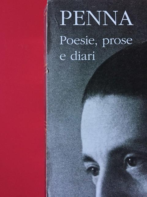 Sandro Penna, Poesie, prose e diari. Mondadori, i Meridiani; Milano 2017. Resp. gr. non indicata. Cofanetto editoriale, piatto posteriore [part.].