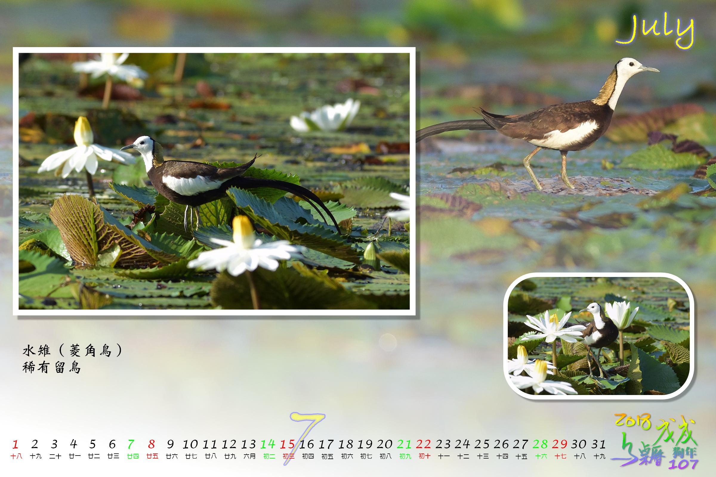 Calendar2018_Alder2_07