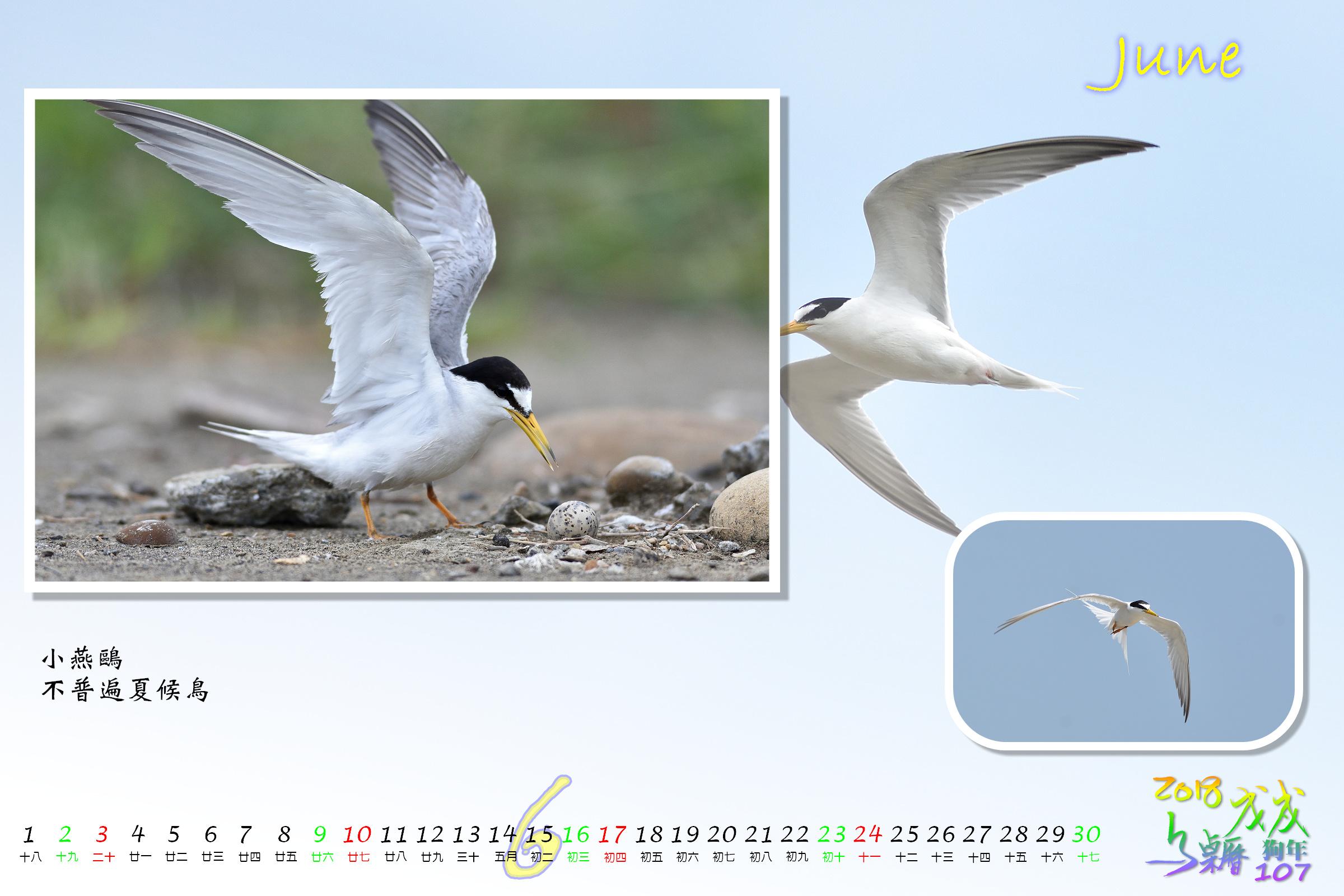 Calendar2018_Alder2_06