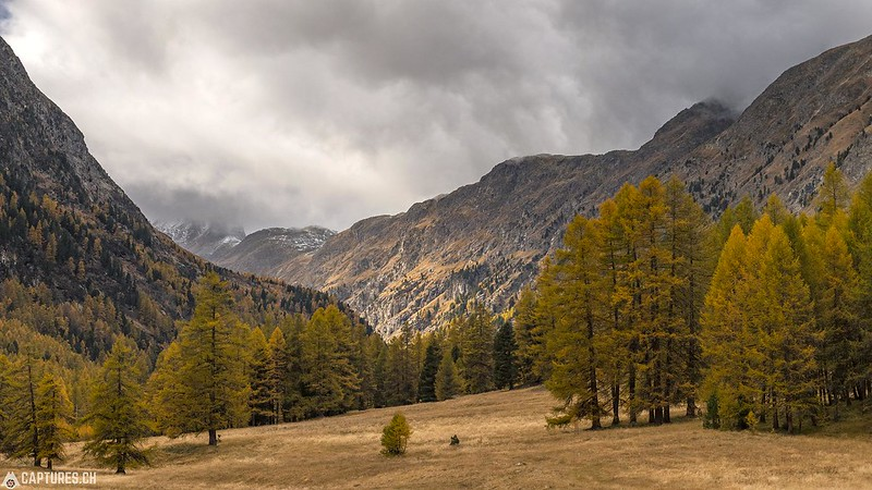Light in the valley - Val Bever