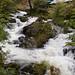 Rydal Beck Waterfall  5