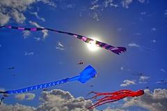 Big Kites