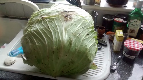 cabbage supersize Oct 17