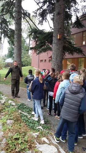 Látogatást a Saághy Erdészeti Információs Központban