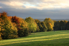 Autumn colours at University of Kent