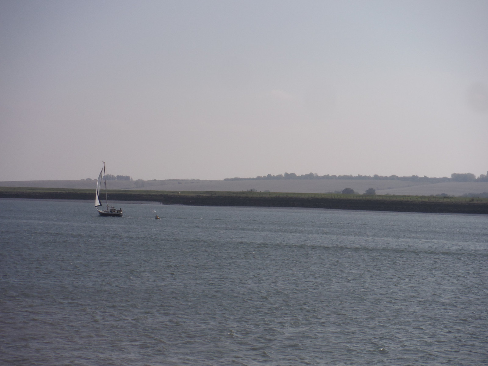 Lone Sailing Boat SWC Walk 162 North Fambridge to Burnham-on-Crouch