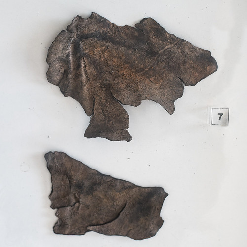 Roman worked leather from Mina dos Mouros, Campo de Jales, 2