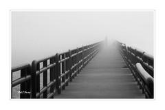 Foggy Breakwall 03