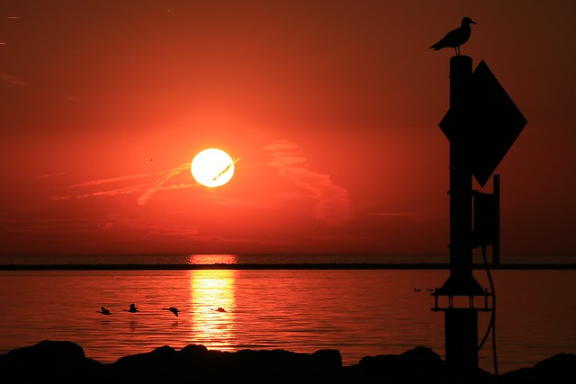 On the Wings of Morning: Sunrise on Milwaukee Bay