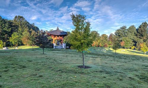 meadowlark virginia autumn clouds fall koreangarden landscape sunrise trees