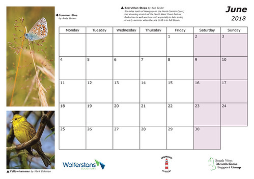 2018 Iplymouth Charity Calendar Iplymouth Flickr