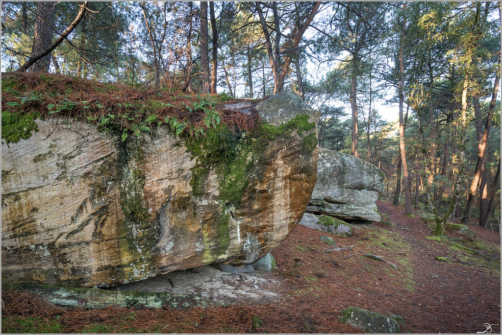 Les rochers de Nemours 37484093082_7f613b9b2d_b