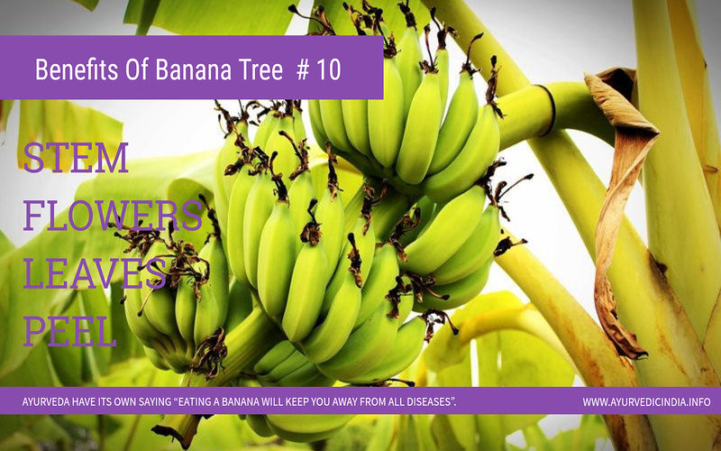 10 Health Benefits of Bananas