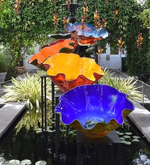 Chihuly Glass Sculpture at New York Botanical Garden