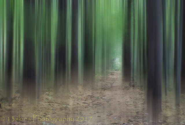 The Path Away (HSS)
