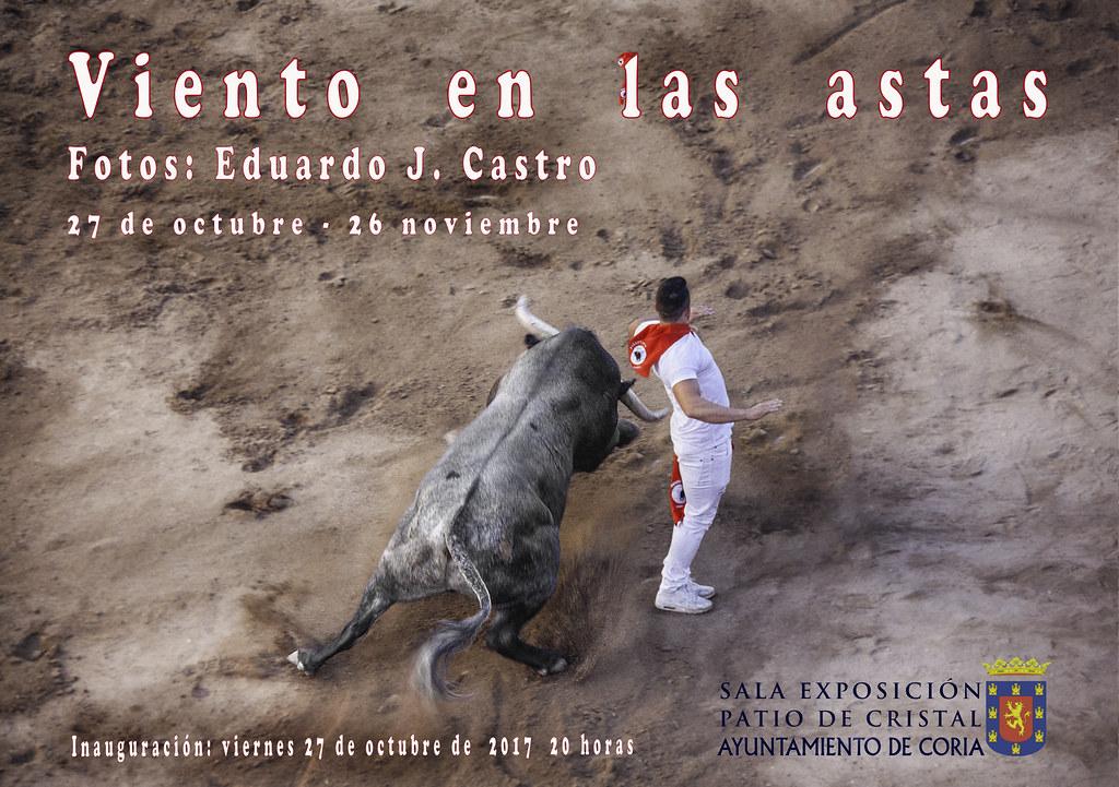 """La Exposición """"Vientos en las astas"""" de Eduardo J. Castro podrá visitarse en el Patio de Cristal del Ayuntamiento de Coria"""