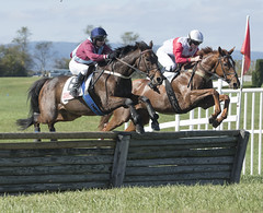 2017 Fall Races in Middleburg