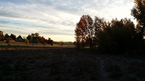 #tommw 38F mostly cloudy. Calm