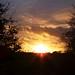 5591 Ynys Môn sunset