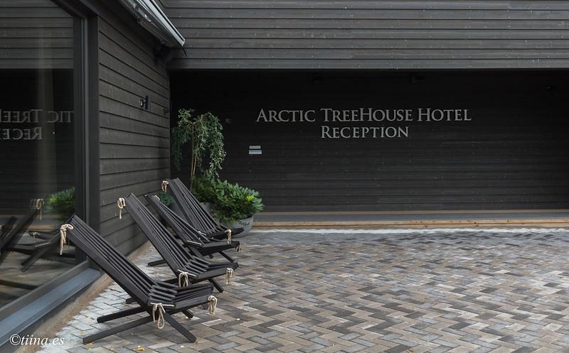 ArcticTreeHouse18