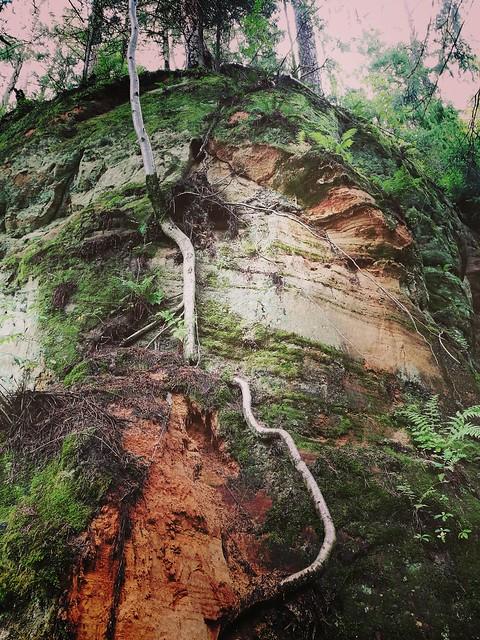 Līču-Lanģu klintis, dabas taka