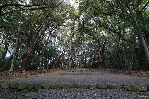 Takamiya Kannabi-sai Ceremony