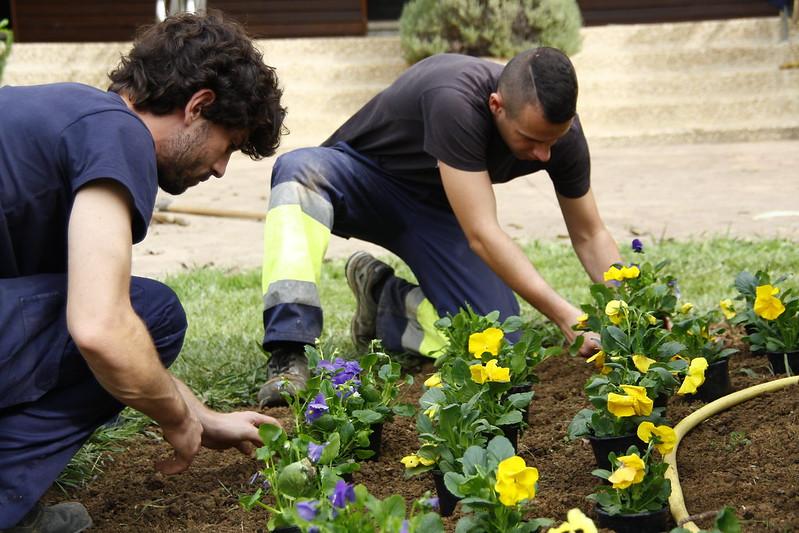 Jardineritzako praktikak