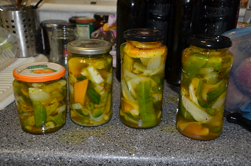 pickled cucumber Oct 17