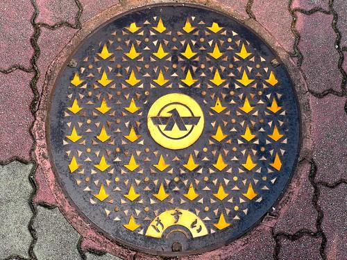 Tsubata Ishikawa, manhole cover 7 (石川県津幡町のマンホール7)