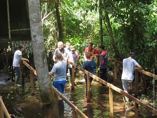 Volunteer Orangutan Foundation International Construction Volunteer teams