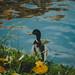 Quack by bluishgreen12