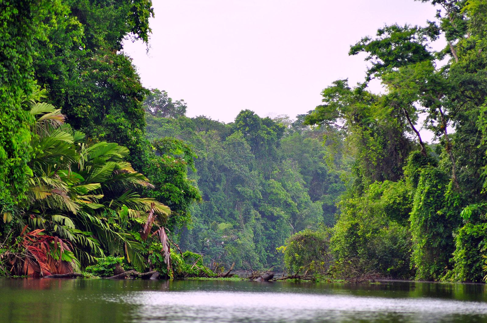 Viajar a Costa Rica / Ruta por Costa Rica en 3 semanas ruta por costa rica - 24377763358 444bb00106 h - Ruta por Costa Rica en 3 semanas
