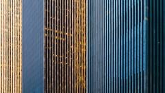 New York Architecture #439
