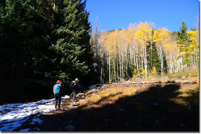 Gore Range Trail, Silverthorne (6)