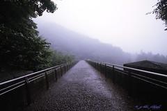 霧中の眼鏡橋_2