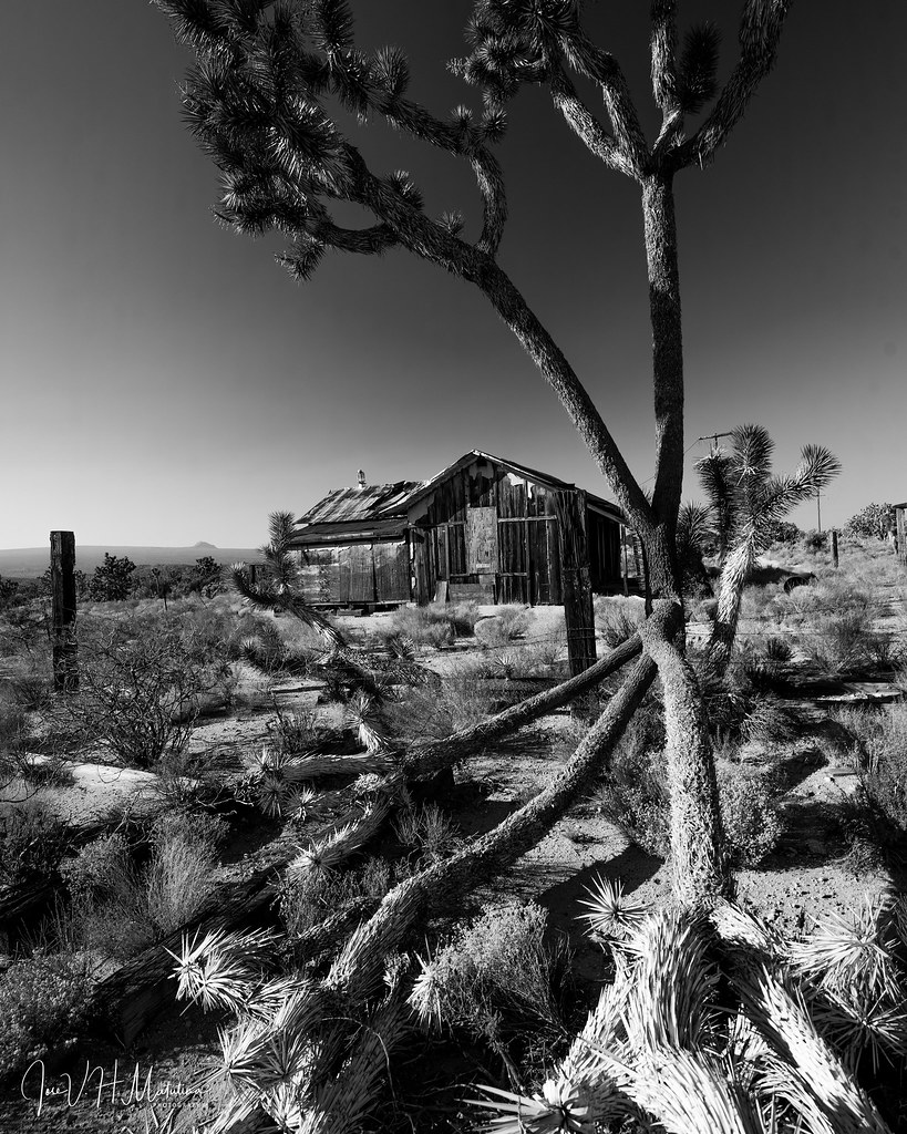 Luxury Resorts in the Desert
