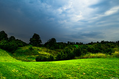 Open Field Beside a Farm