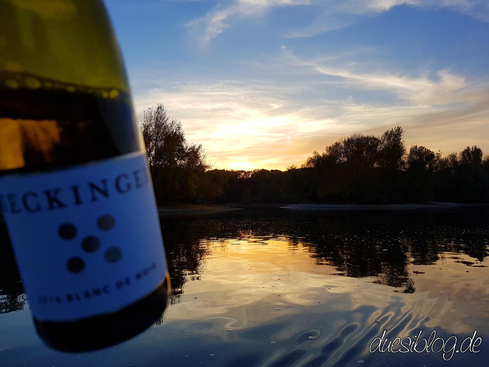 Generation Pfalz WtasO (Wein trinken an schönen Orten) mit Weingut Seckinger auf Hoher See