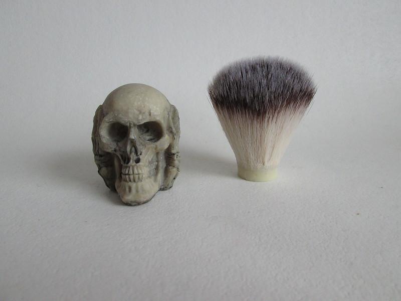 """Blaireau """"skull""""  37875269611_0d069cd610_c"""