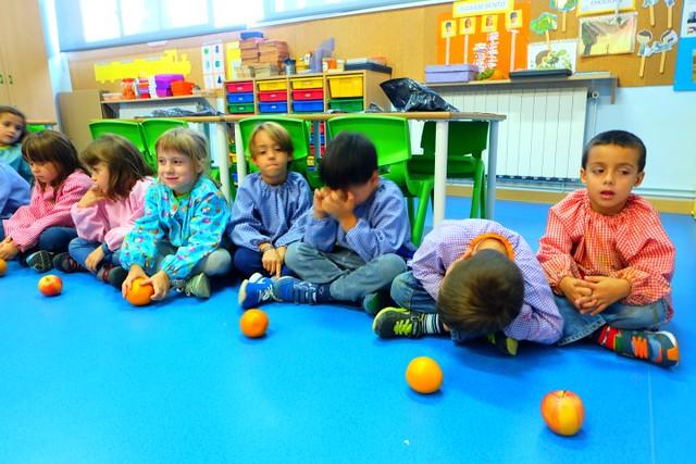 Geometria amb fruites P5C