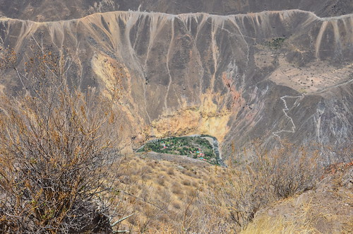 Blick auf die Oase Sangalle am Rio Colca unterhalb Cabancondes