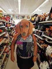 grandma in the Halloween aisle