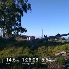 Awesome day to spend some time out on the trails again... #running #runner #trailrun #trail #stravaphoto #nature #fun #southafrica #tomtom #tomtomadventurer #fitness #trails #outdoorsports #stravarun #runsa #runninglife #innov #innov8 #innov8roclite #Resu