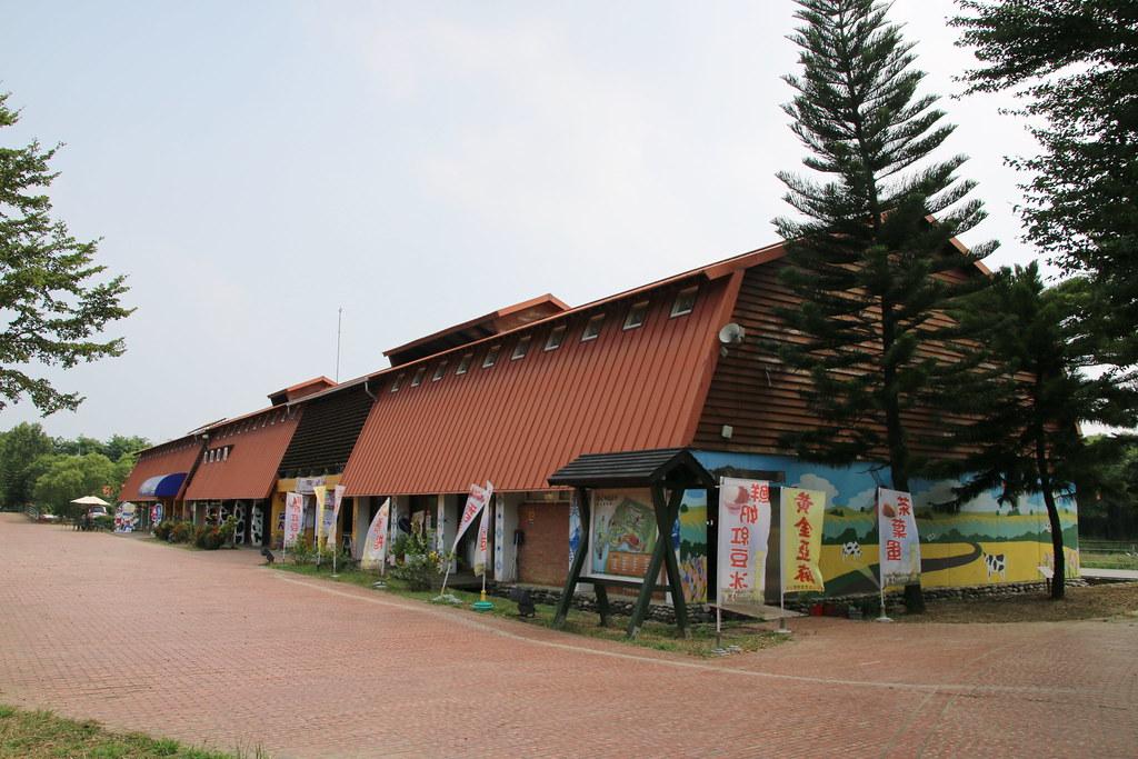 荷蘭村 (11)