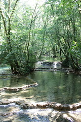 2015-07-04-11-20-54_Les Forts Trotters_dans le Haut Doubs