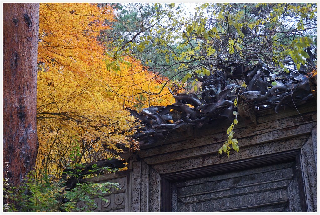 紅葉迴廊-久保田一竹美術館-22