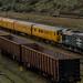 Class 37 37025 & 37421 Colas_PA230114