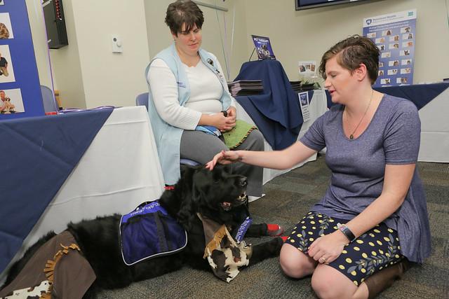 Pet Therapy Awareness Day (10/30/17) - Milton S. Hershey Medical Center